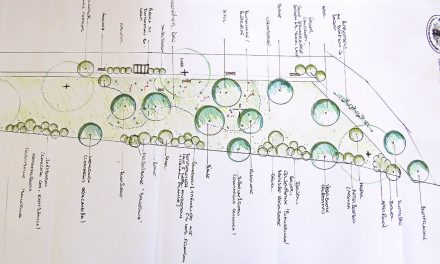 """Naschpark"" in Kirchberg geplant"