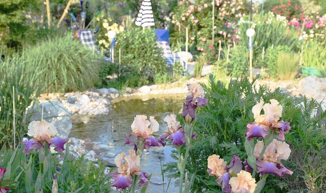 Ausflugstipp: Gartenschautage