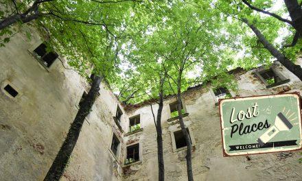 Ruine Thernberg kämpft gegen den Zerfall