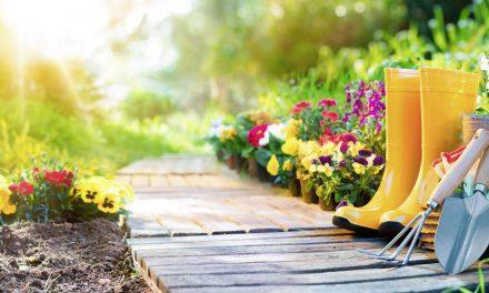 Gartensommer
