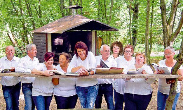 Lesung: Sommergedanken im Pavillon in Seebenstein