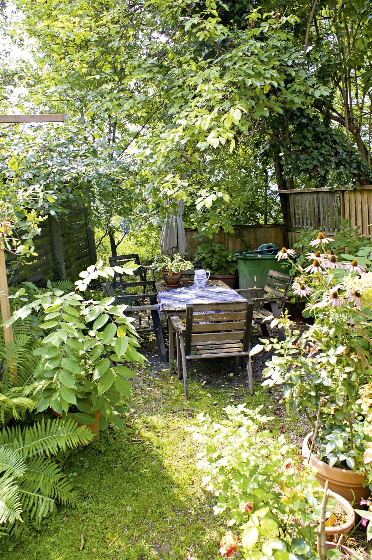 Wildes Gartenparadies