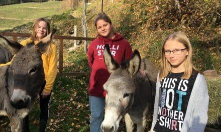 Weihnachts-Esel für Äthiopien gespendet