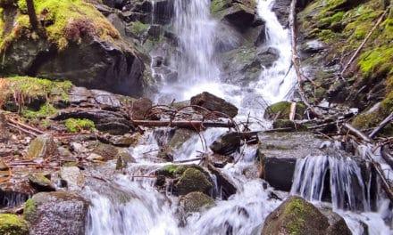 Ausflugstipp: Themenweg Wasser