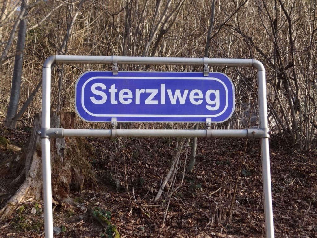 ausflug_bote205Sterzlweg
