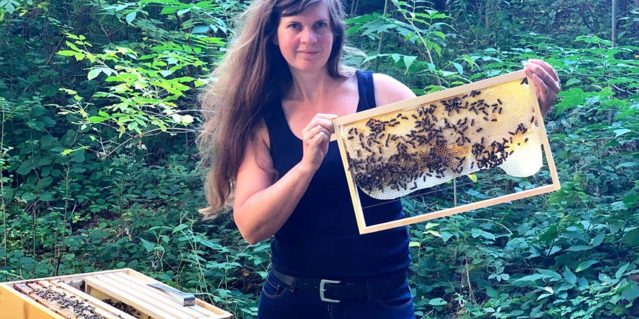 Bienen-App vernetzt Imker