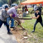 Holz und altes Handwerk in Tiefenbach