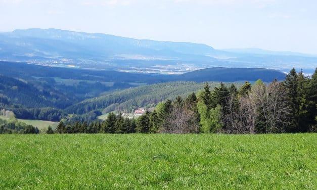 Ausflugstipp: Hollabrunn/Hochegg