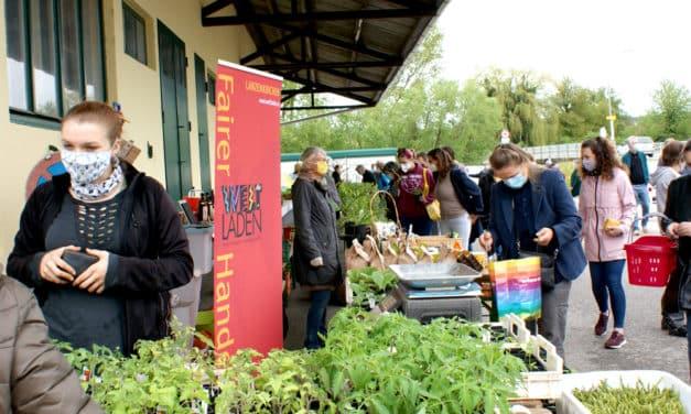 Lanzenkirchen: Pflanzenmarkt