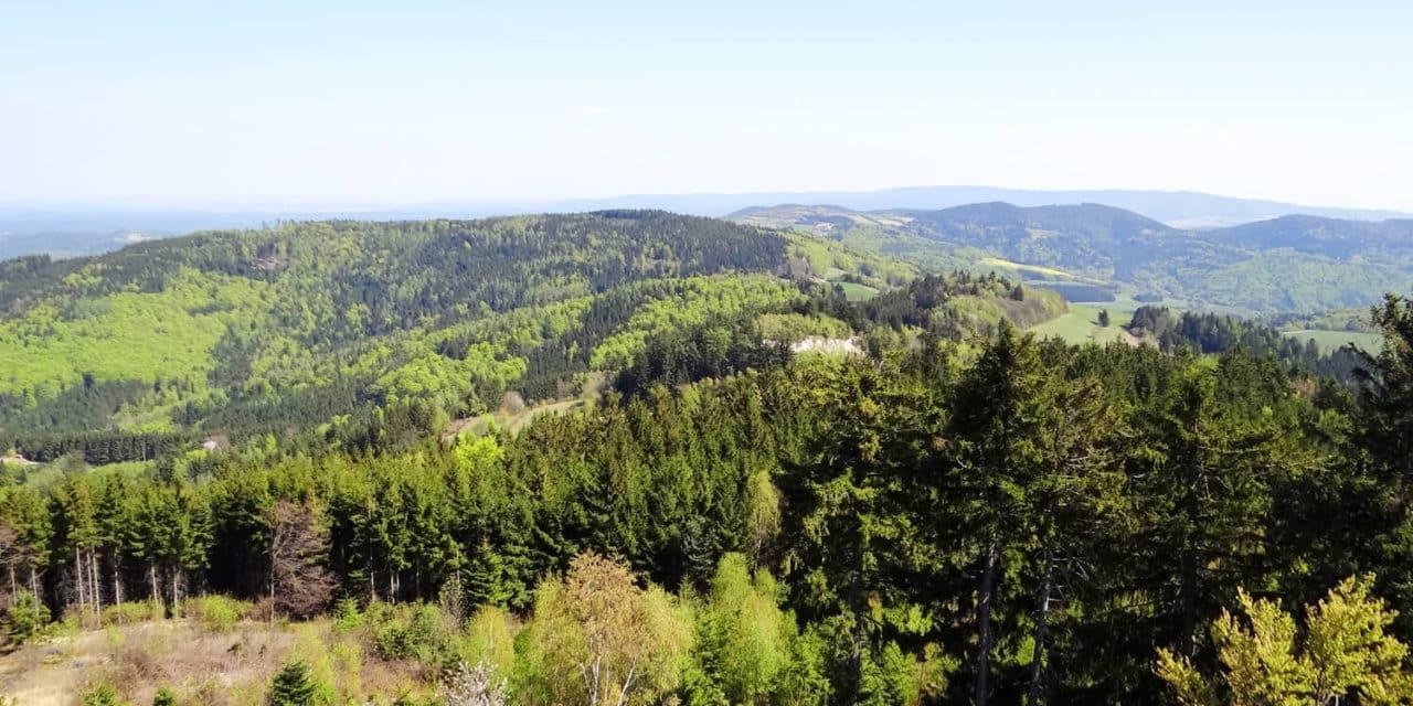 Ausflugstipp: Hutwisch