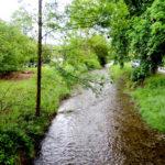 Hochwasserschutz und Erholungsraum