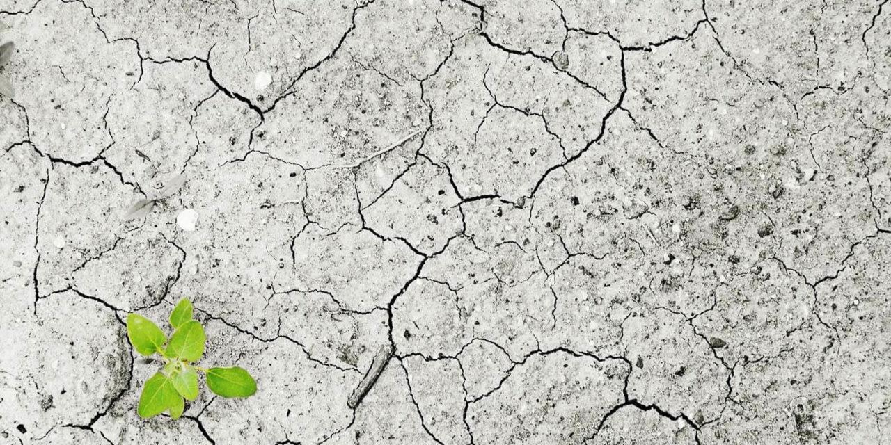 Klimawandel – Herausforderung  und Chance  in unserer Region!