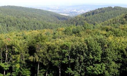 Ausflugstipp: Bourbonenweg samt Aussichtswarte
