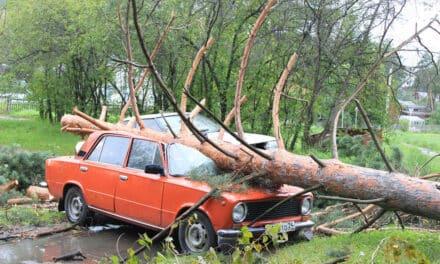 Naturkatastrophen – richtige Absicherung für Haus und Heim