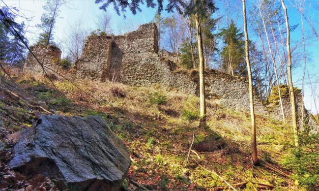 Burg Stubenberg: Gesprengte Mauern, tief im Wald