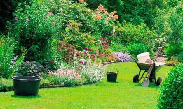 Naschen und genießen im Garten