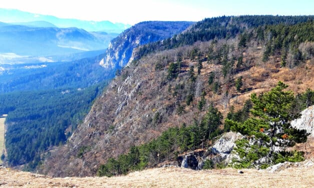 Excursion Tip: Hohe Wand