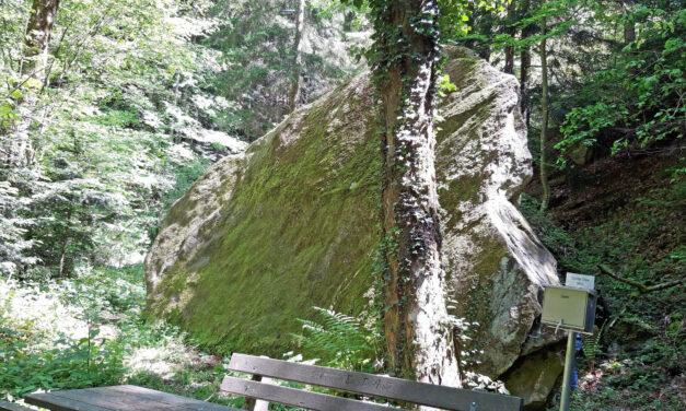 """Ausflugstipp: """"Großer Stein"""" in Edlitz"""