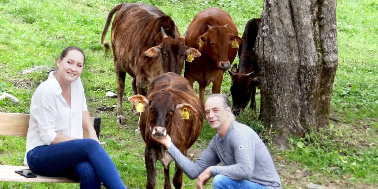 Tierisch was los am Bauernhof